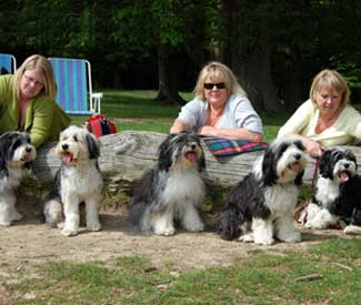 Tillymint's family reunion at Petworth Park